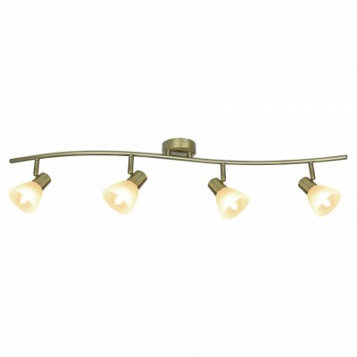Спот Arte Lamp Parry A5062PL-4AB